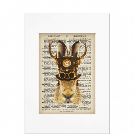 Top-Hat-Hare