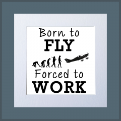 Born To Fly (Fixed Wing)